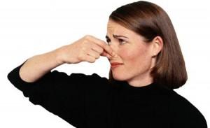 eliminar malos olores
