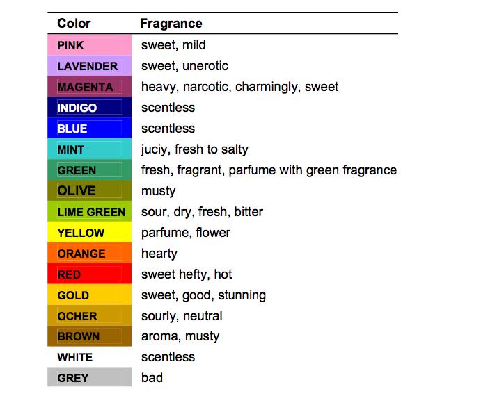 Estudio sobre la implantación del marketing olfativo en comercios.